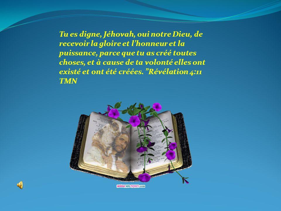 Tu es digne, Jéhovah, oui notre Dieu, de recevoir la gloire et l'honneur et la puissance, parce que tu as créé toutes choses, et à cause de ta volonté elles ont existé et ont été créées. Révélation 4:11 TMN
