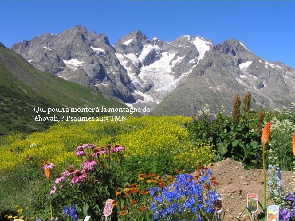 Qui pourra monter à la montagne de Jéhovah, Psaumes 24:3 TMN