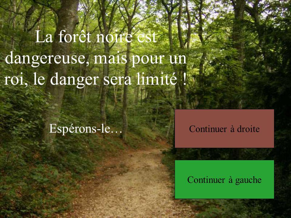La forêt noire est dangereuse, mais pour un roi, le danger sera limité !