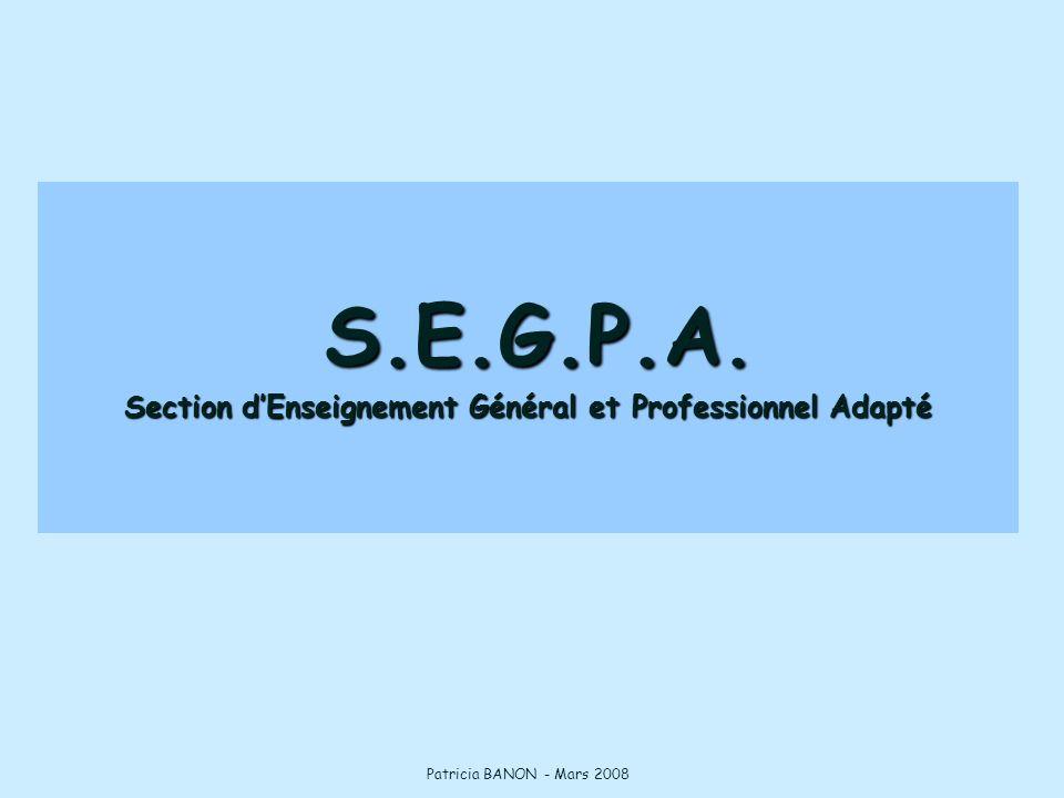 S.E.G.P.A. Section d'Enseignement Général et Professionnel Adapté