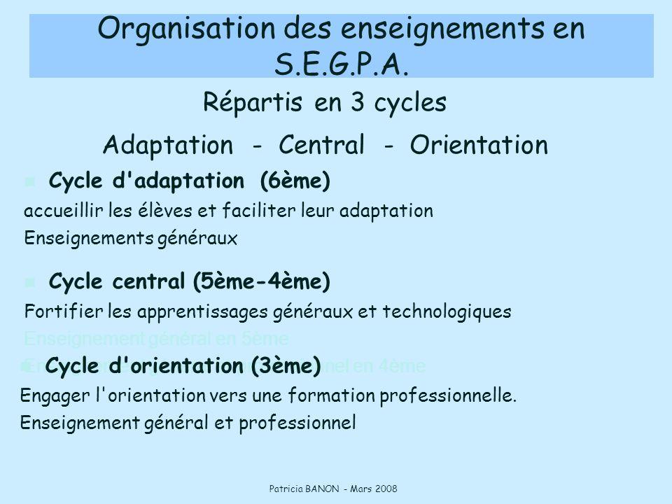 Organisation des enseignements en S.E.G.P.A.