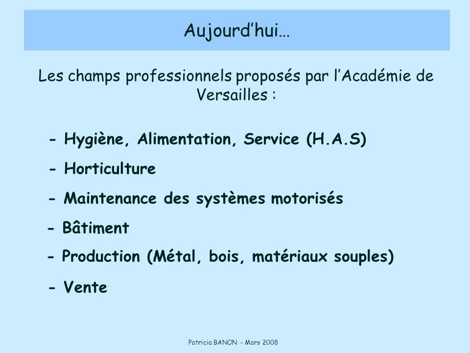 Les champs professionnels proposés par l'Académie de Versailles :