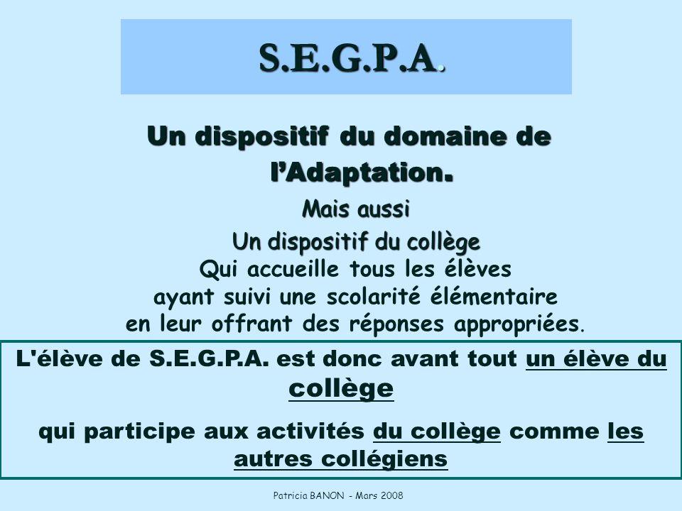 S.E.G.P.A. Un dispositif du domaine de l'Adaptation. Mais aussi