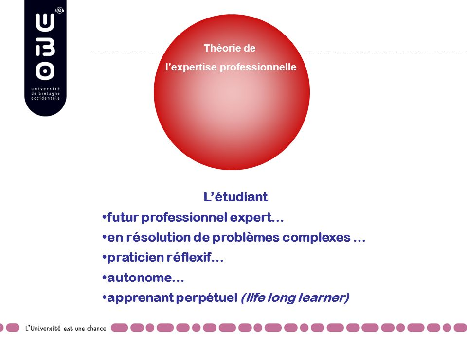 l'expertise professionnelle