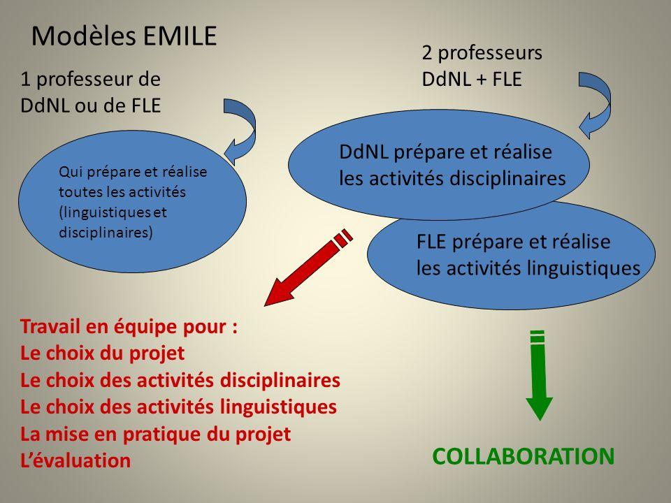 Modèles EMILE COLLABORATION 2 professeurs DdNL + FLE 1 professeur de