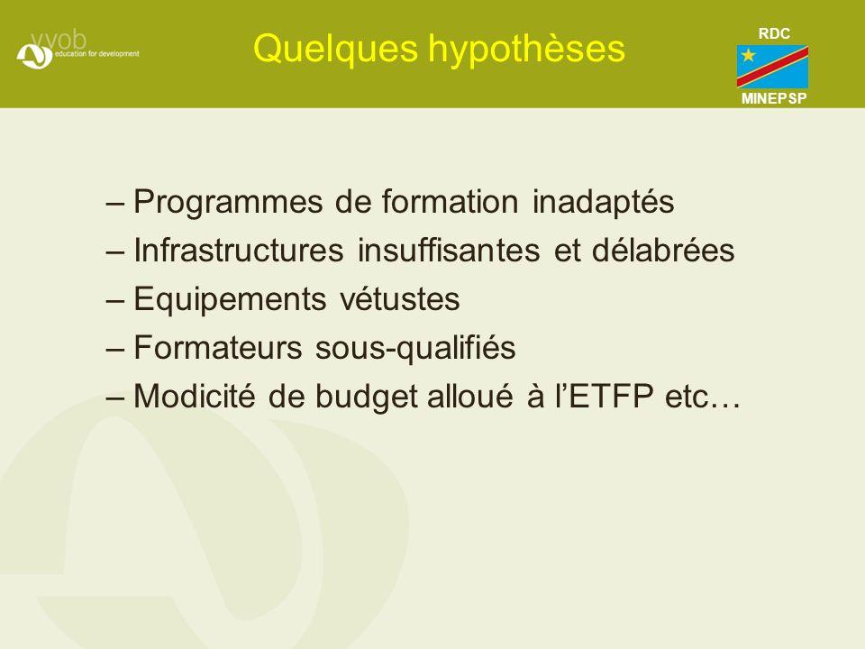 Quelques hypothèses Programmes de formation inadaptés