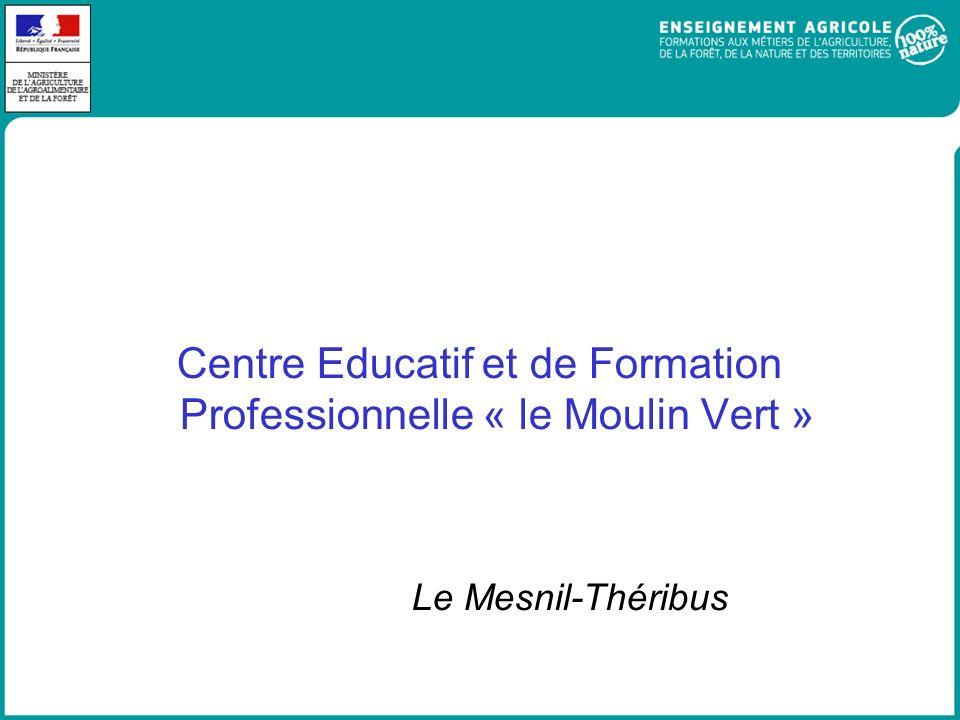 Centre Educatif et de Formation Professionnelle « le Moulin Vert »