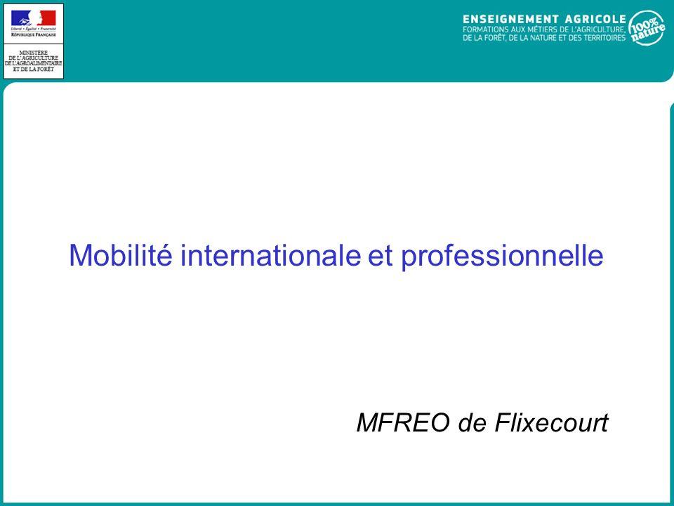 Mobilité internationale et professionnelle