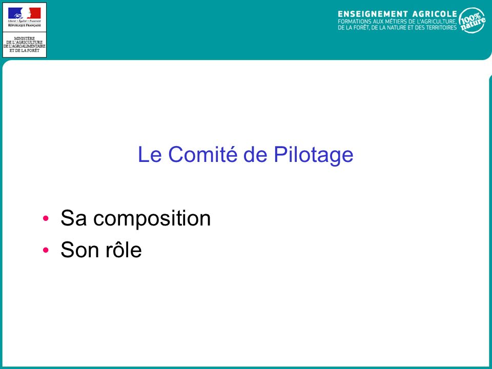 Le Comité de Pilotage Sa composition Son rôle