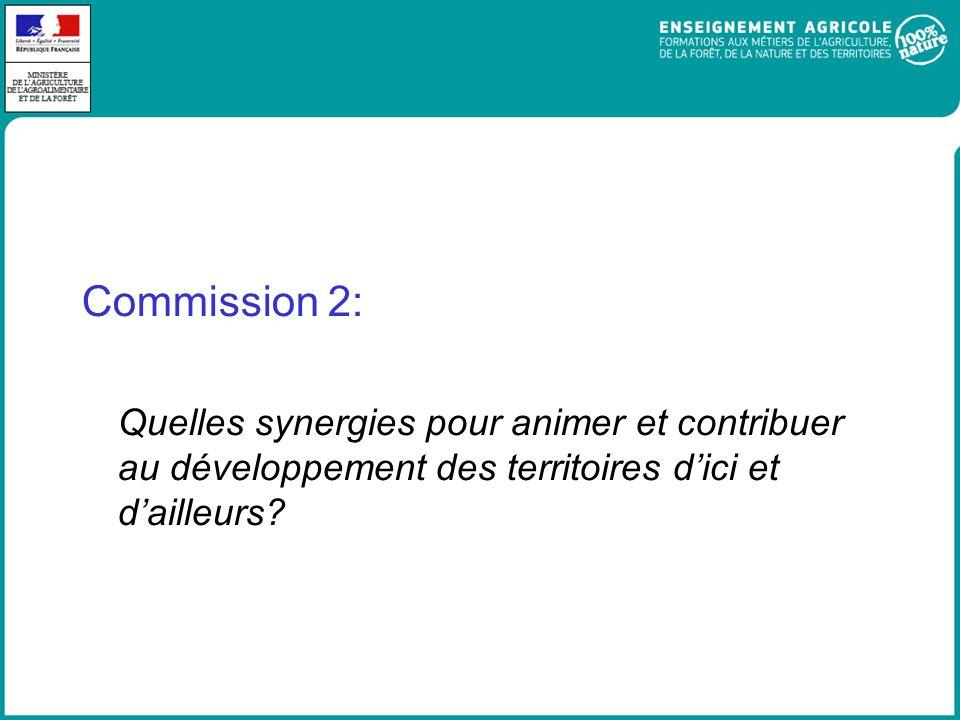 Commission 2: Quelles synergies pour animer et contribuer au développement des territoires d'ici et d'ailleurs