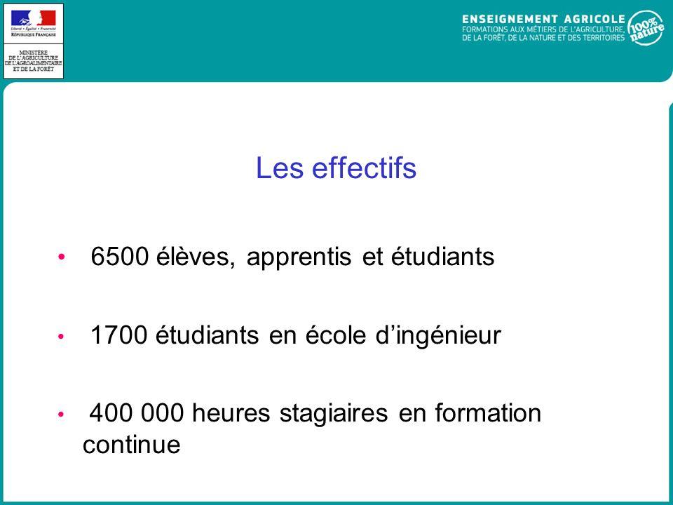 6500 élèves, apprentis et étudiants