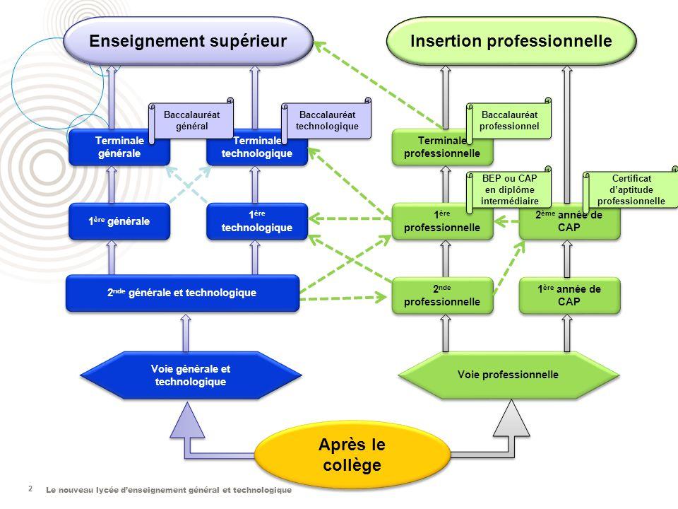 Enseignement supérieur Insertion professionnelle Après le collège