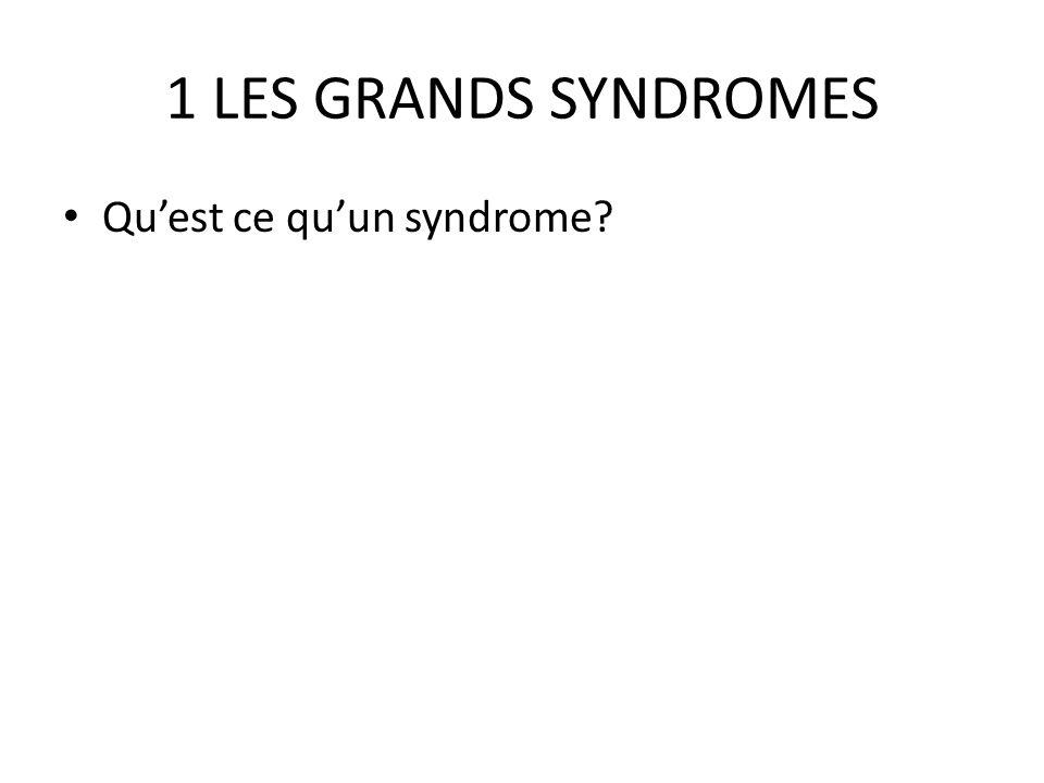 1 LES GRANDS SYNDROMES Qu'est ce qu'un syndrome