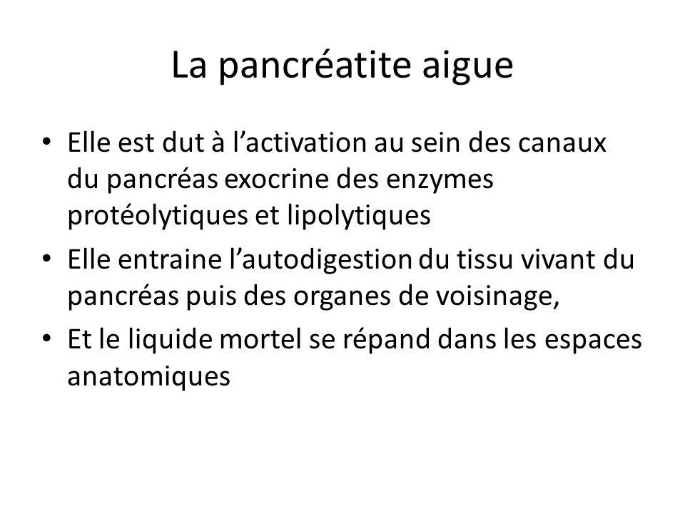 La pancréatite aigue Elle est dut à l'activation au sein des canaux du pancréas exocrine des enzymes protéolytiques et lipolytiques.