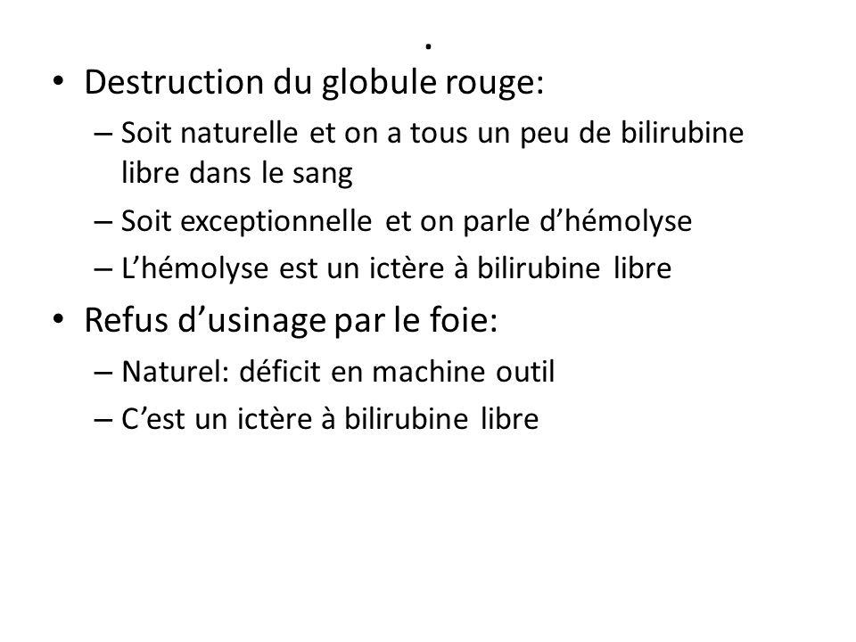 . Destruction du globule rouge: Refus d'usinage par le foie:
