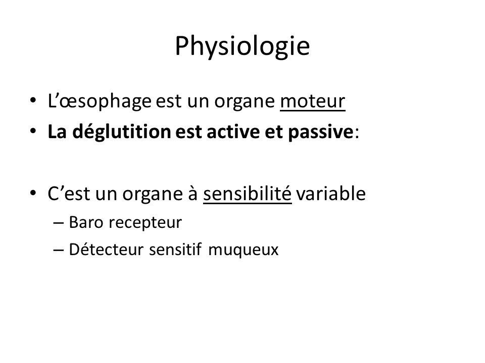 Physiologie L'œsophage est un organe moteur