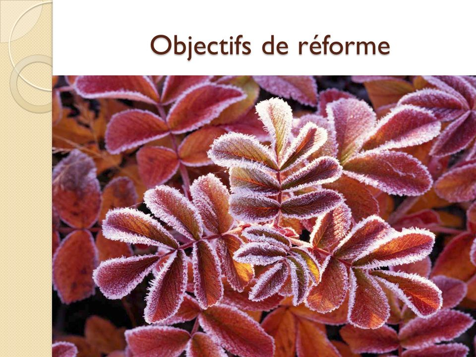Objectifs de réforme