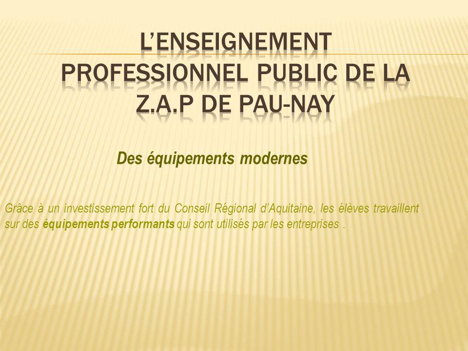L'ENSEIGNEMENT PROFESSIONNEL PUBLIC DE LA Z.A.P DE PAU-NAY