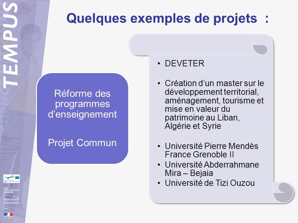 Quelques exemples de projets :