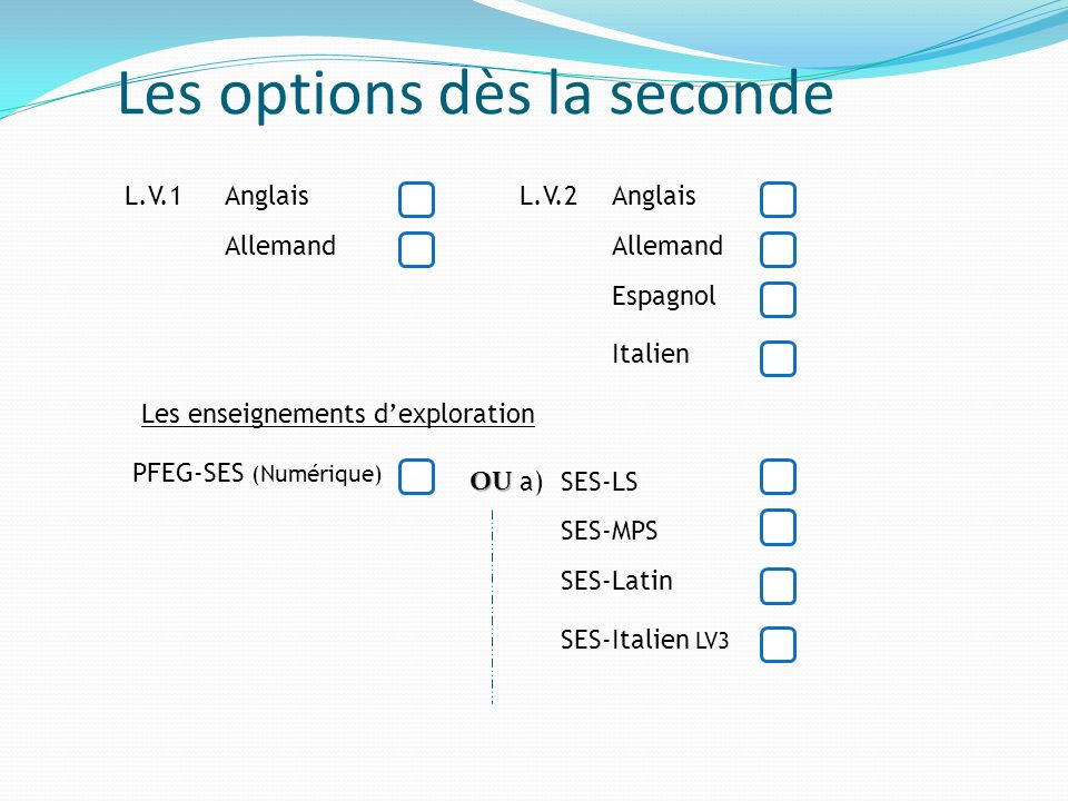 Les options dès la seconde