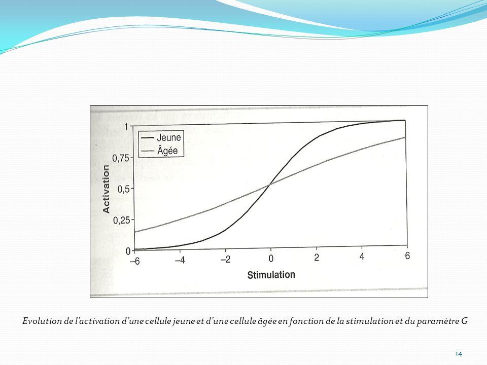 Evolution de l'activation d'une cellule jeune et d'une cellule âgée en fonction de la stimulation et du paramètre G