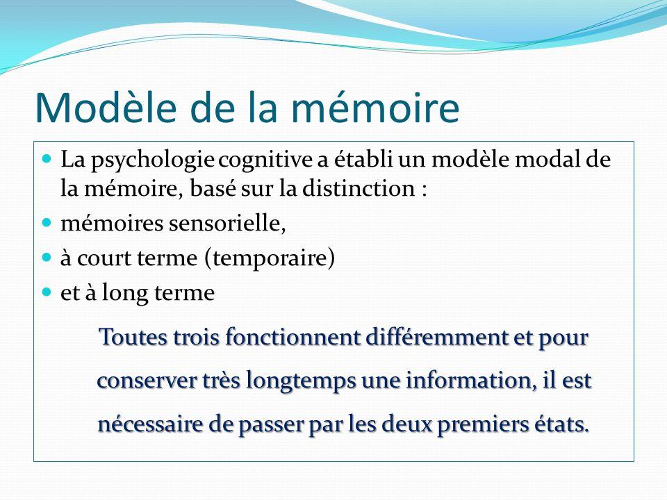 Modèle de la mémoire La psychologie cognitive a établi un modèle modal de la mémoire, basé sur la distinction :