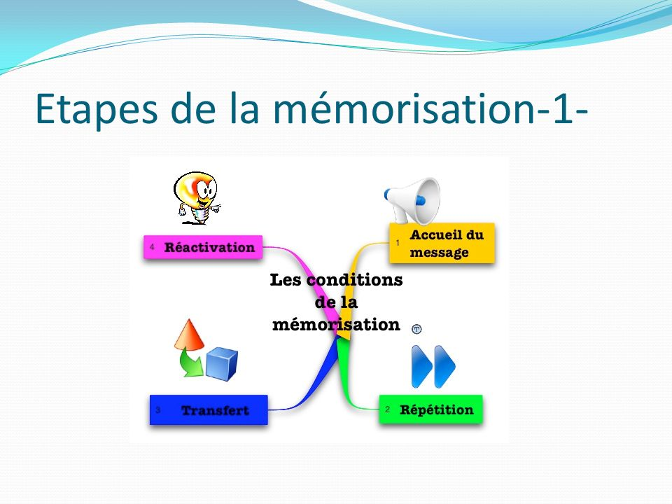 Etapes de la mémorisation-1-
