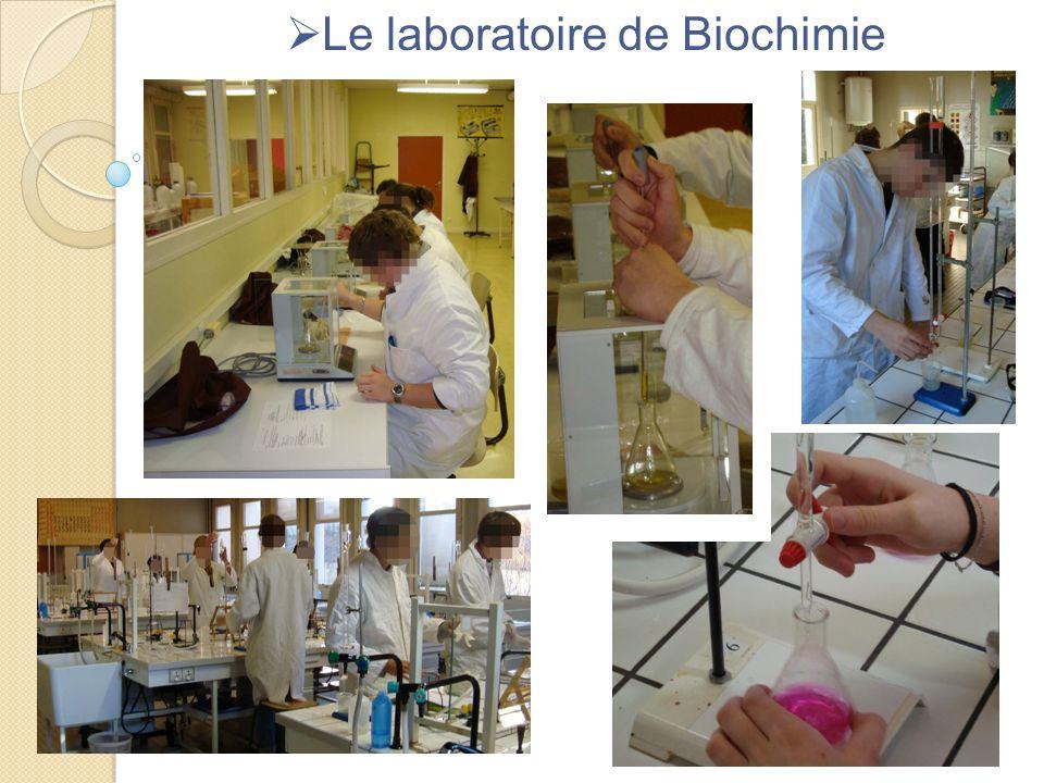 Le laboratoire de Biochimie