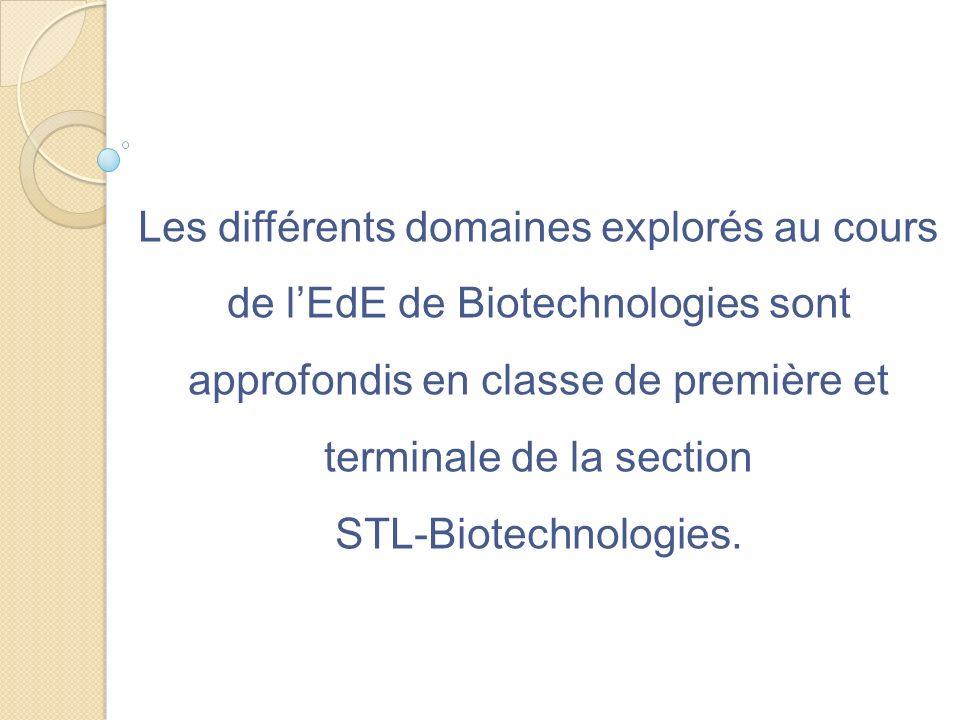 Les différents domaines explorés au cours de l'EdE de Biotechnologies sont approfondis en classe de première et terminale de la section