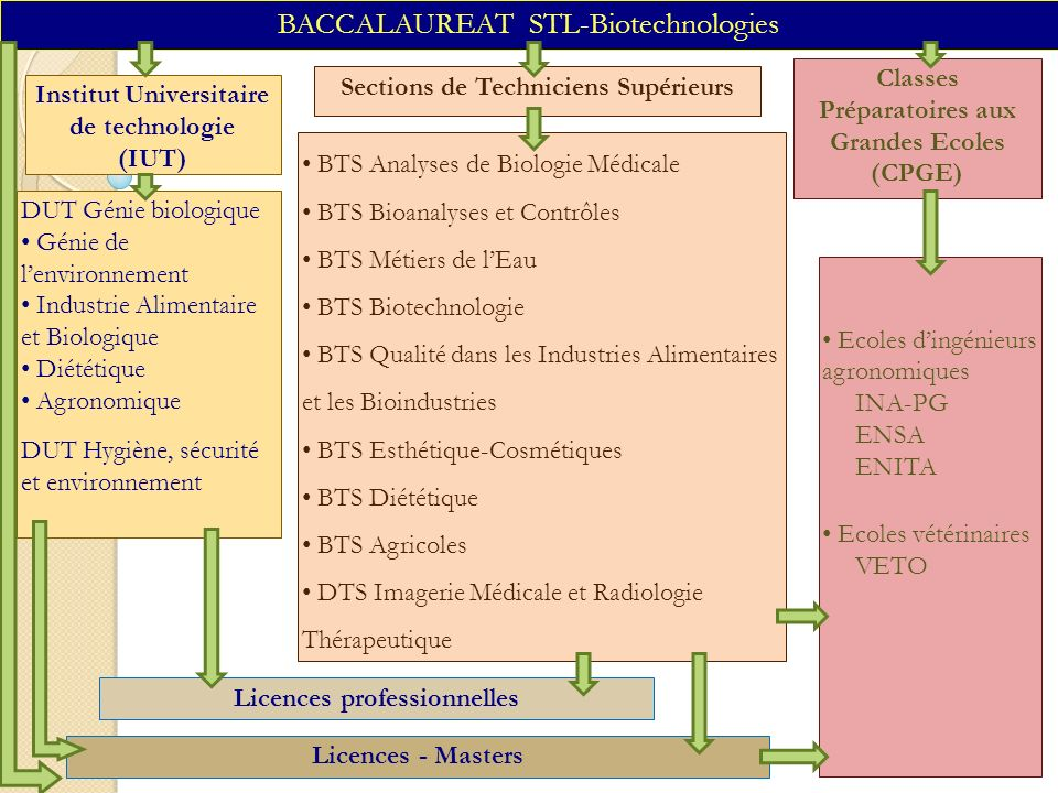 BACCALAUREAT STL-Biotechnologies