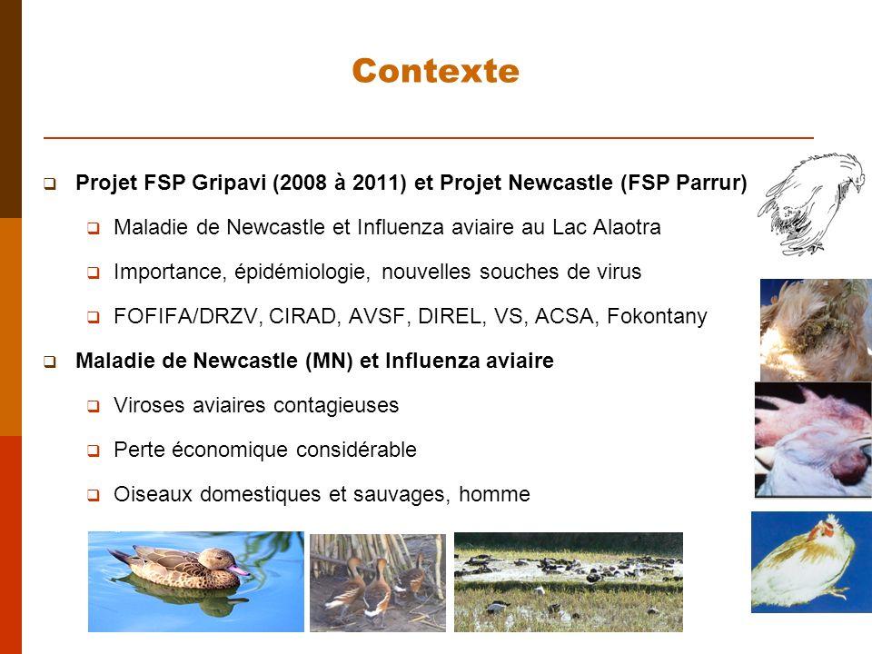Contexte Projet FSP Gripavi (2008 à 2011) et Projet Newcastle (FSP Parrur) Maladie de Newcastle et Influenza aviaire au Lac Alaotra.