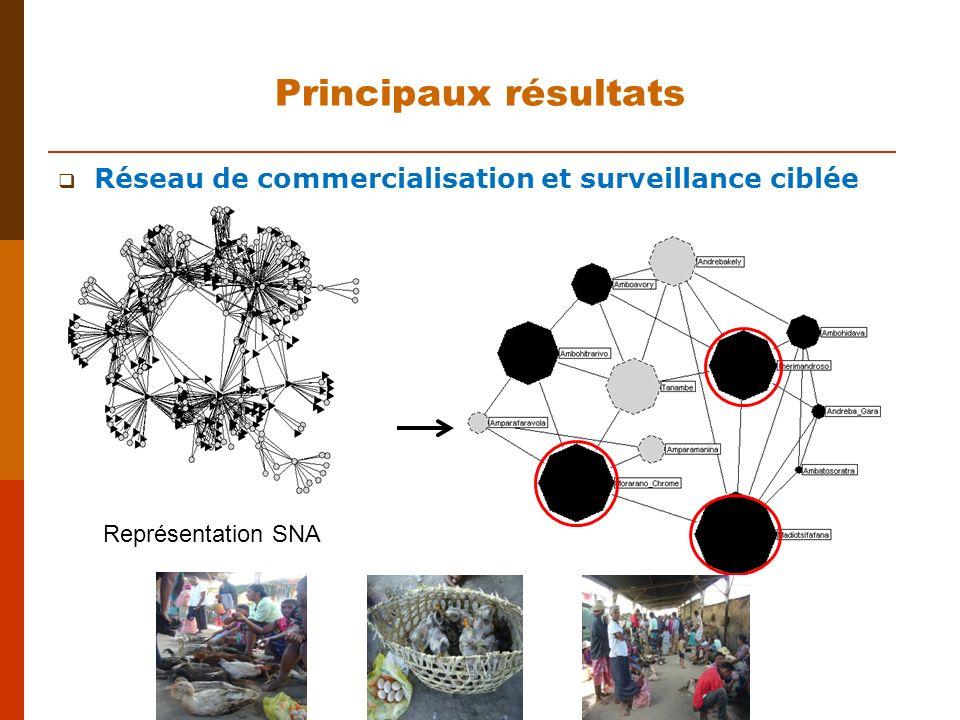 Principaux résultats Réseau de commercialisation et surveillance ciblée Représentation SNA