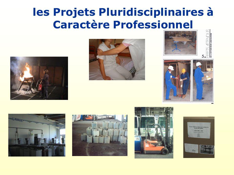 les Projets Pluridisciplinaires à Caractère Professionnel