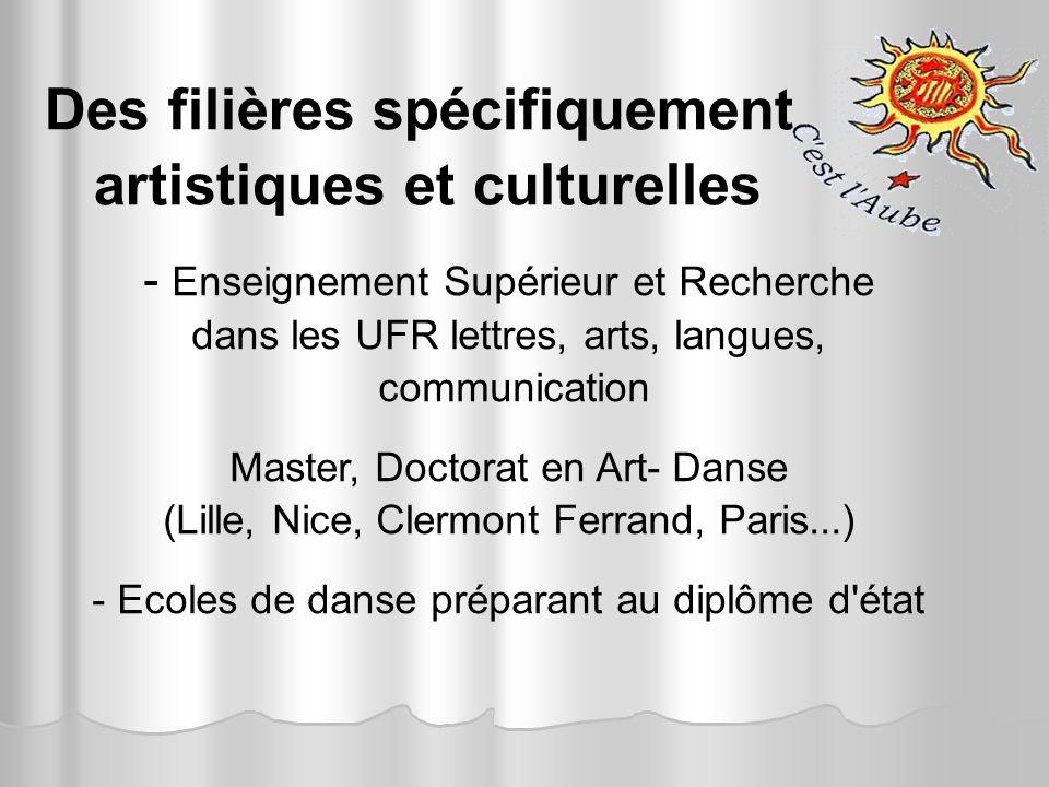 Des filières spécifiquement artistiques et culturelles