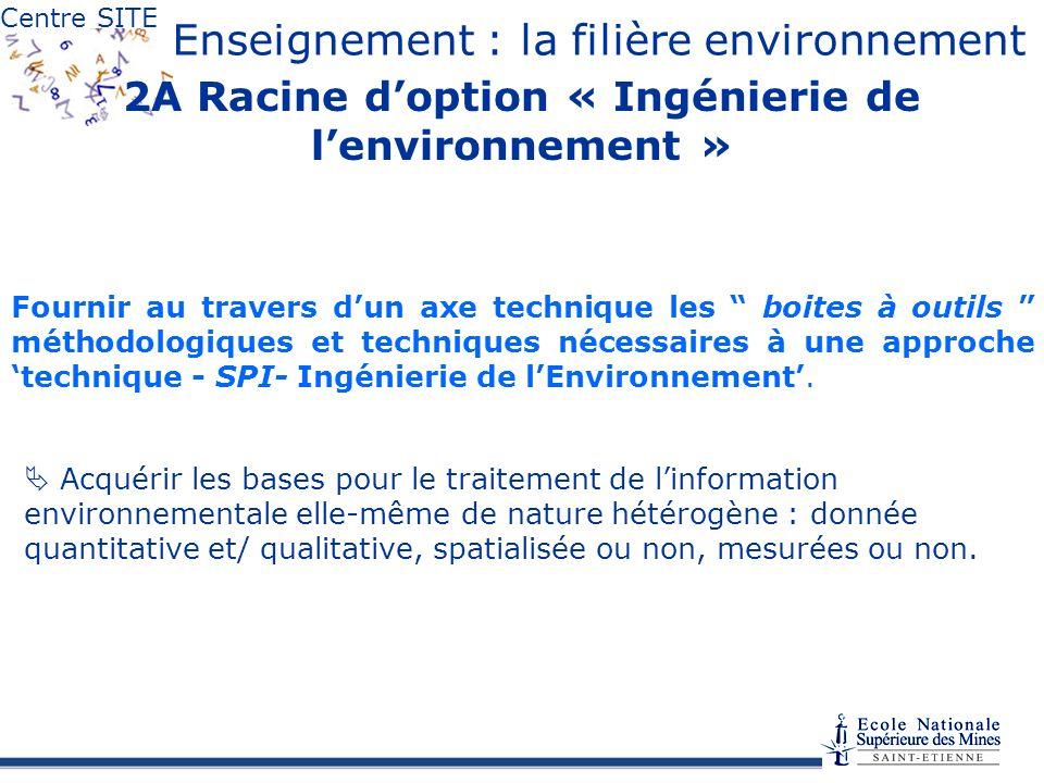 2A Racine d'option « Ingénierie de l'environnement »