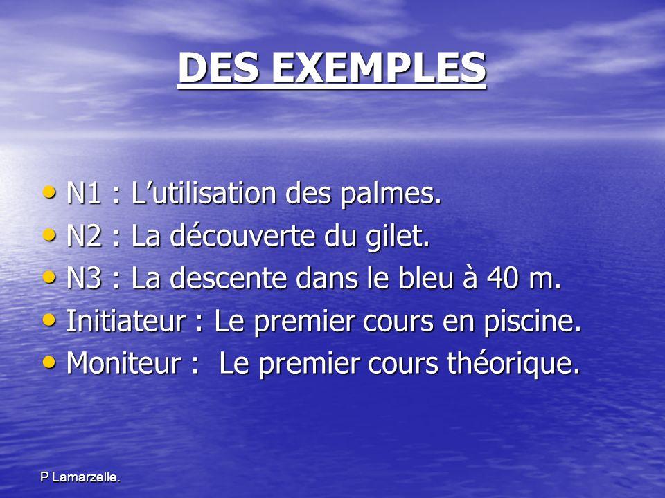 DES EXEMPLES N1 : L'utilisation des palmes.