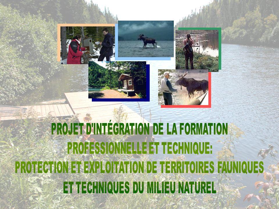 PROJET D INTÉGRATION DE LA FORMATION PROFESSIONNELLE ET TECHNIQUE: