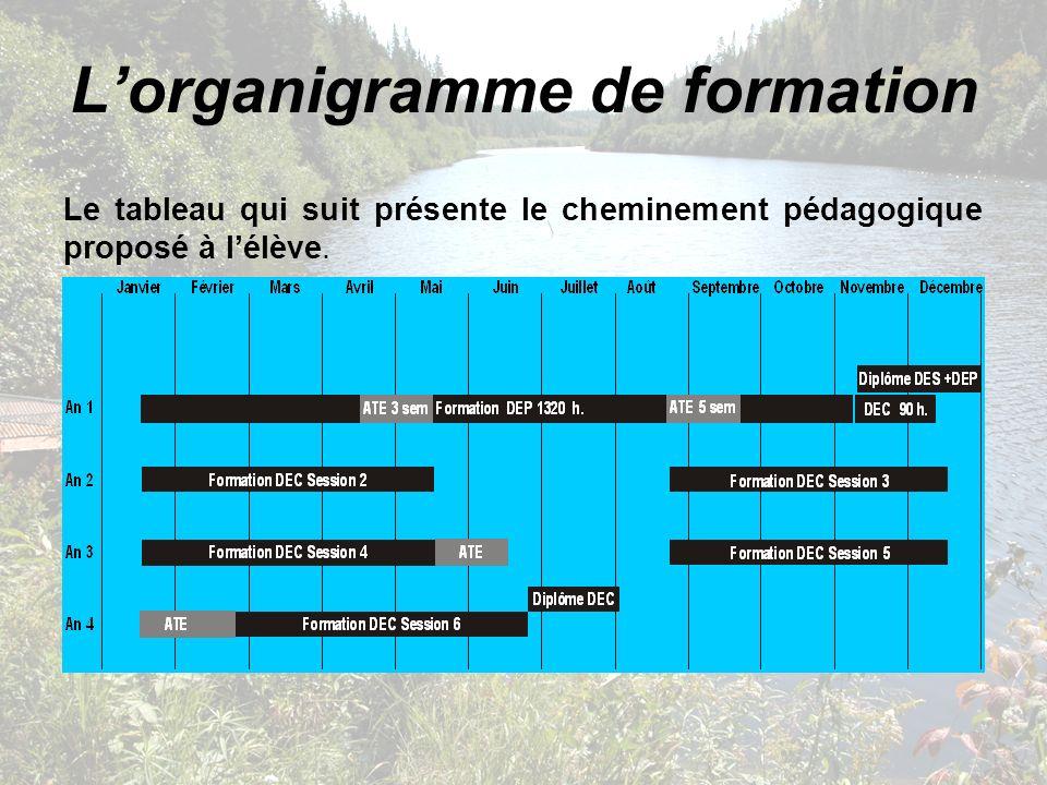 L'organigramme de formation