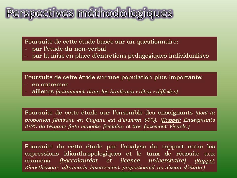 Perspectives méthodologiques