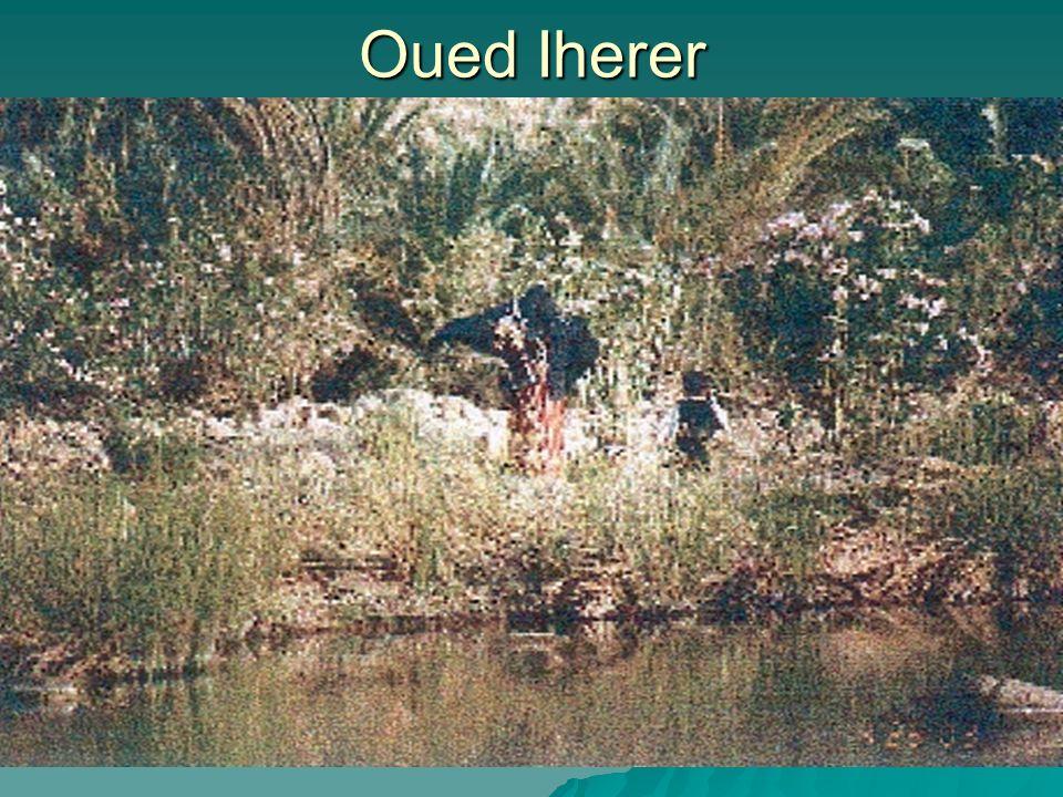 Oued Iherer