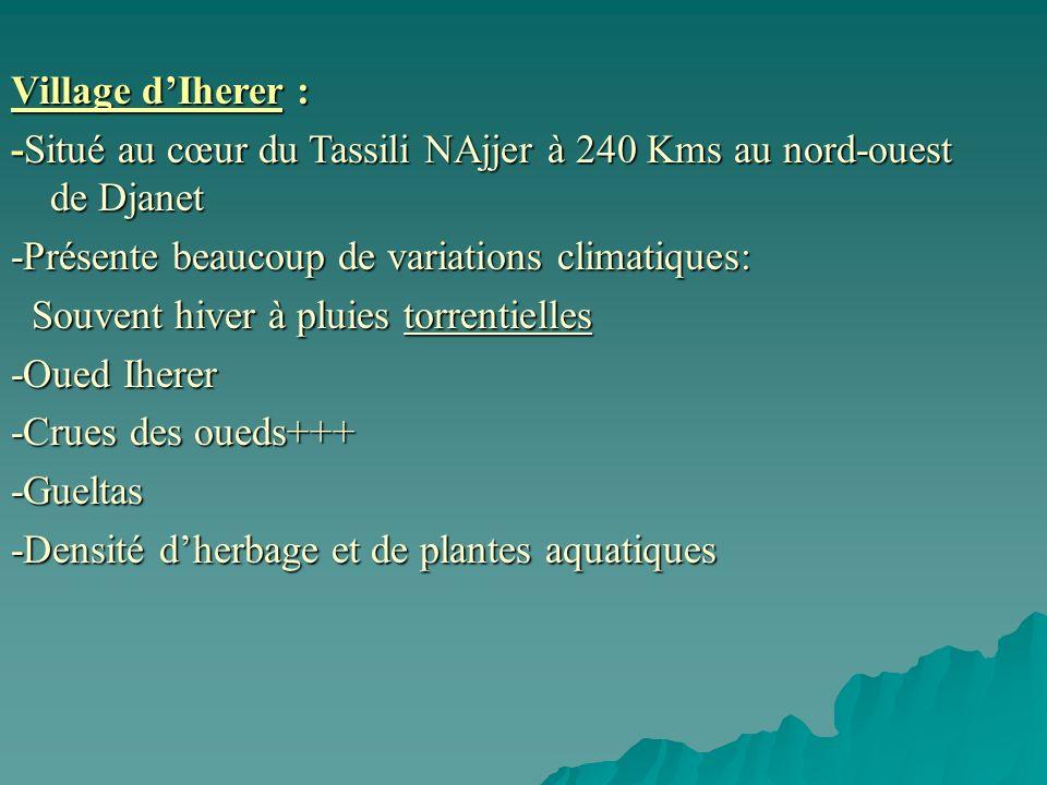 Village d'Iherer : -Situé au cœur du Tassili NAjjer à 240 Kms au nord-ouest de Djanet. -Présente beaucoup de variations climatiques: