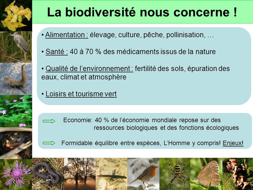 La biodiversité nous concerne !