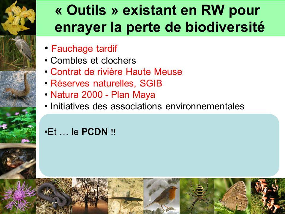 « Outils » existant en RW pour enrayer la perte de biodiversité