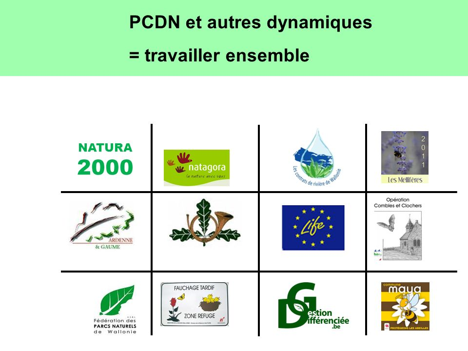 PCDN et autres dynamiques