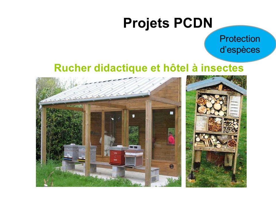 Rucher didactique et hôtel à insectes