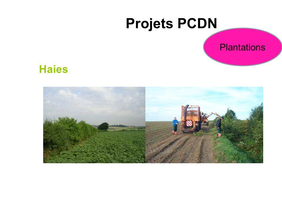Projets PCDN Plantations Haies Plantation et entretien
