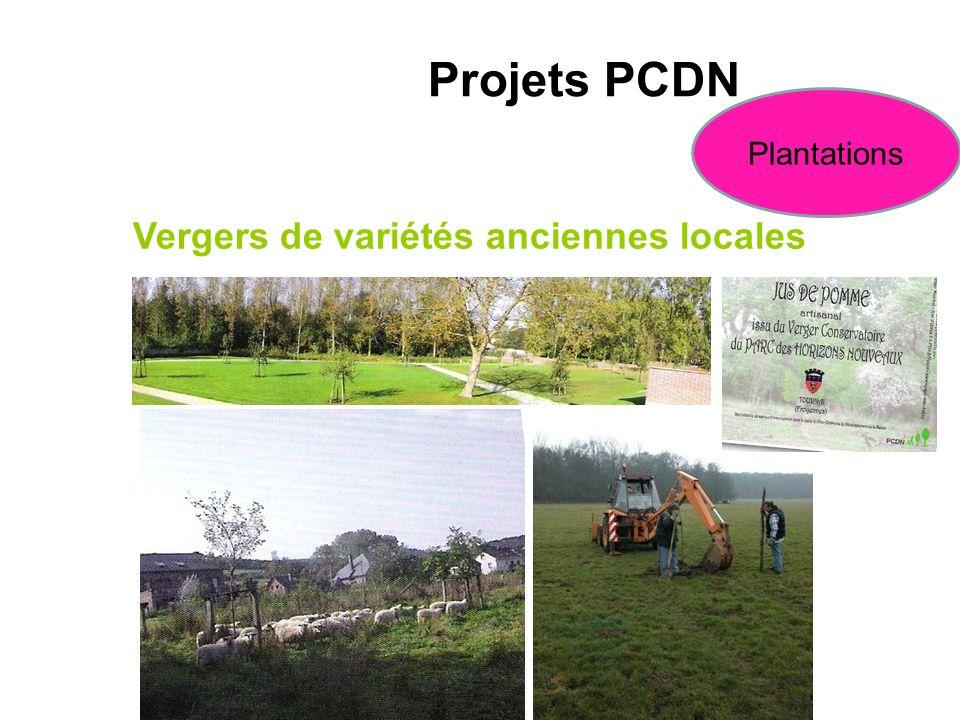 Projets PCDN Vergers de variétés anciennes locales Plantations