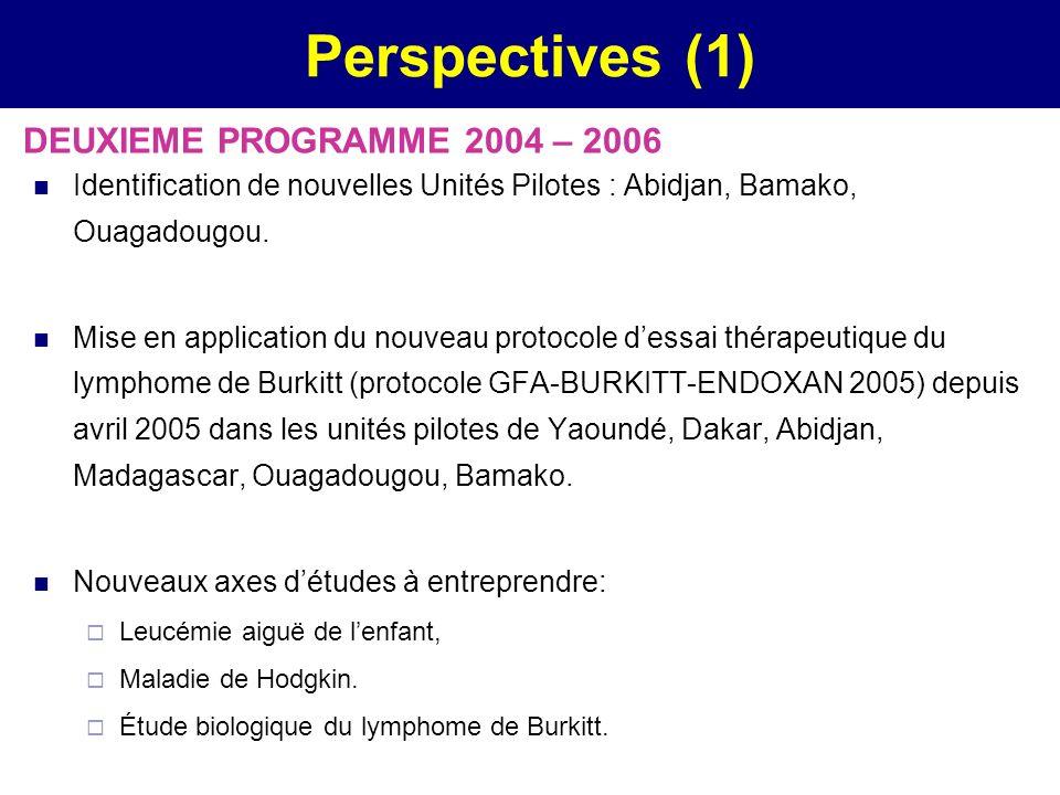 Perspectives (1) DEUXIEME PROGRAMME 2004 – 2006