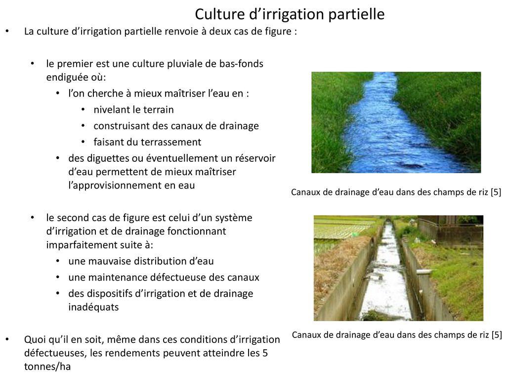 Syst mes de riziculture de bas fonds ppt t l charger - Deux robinets coulent dans un reservoir ...