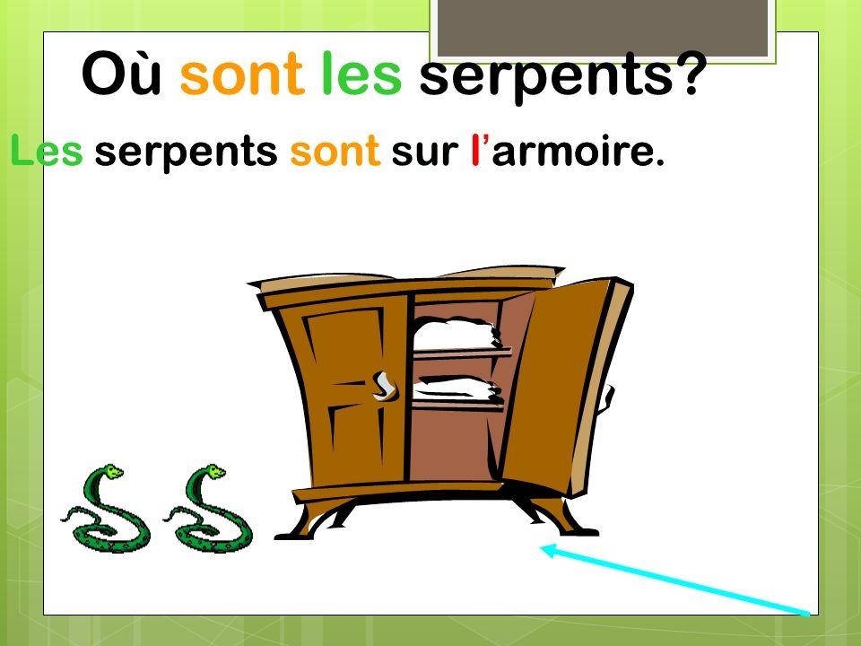 Où sont les serpents Les serpents sont sur l'armoire.